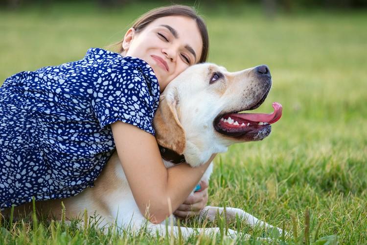 verzekering voor uw hond - familiale verzekering honden